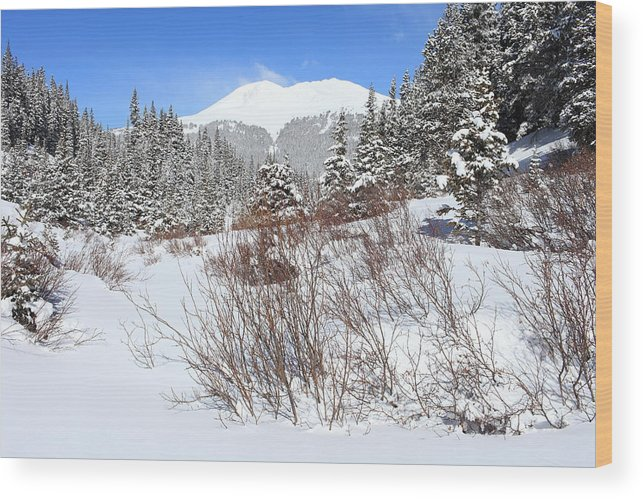 Colorado Wood Print featuring the photograph Jacque Peak by Eric Glaser
