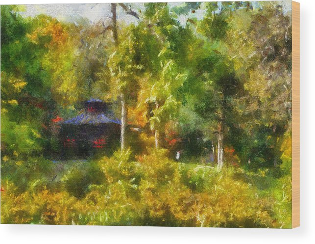 Autumn Wood Print featuring the photograph Japanese Garden Laura Bradley Park 02 by Thomas Woolworth