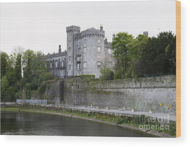 Ancient Wood Print featuring the photograph Kilkenny Castle Seen From River Nore by Christiane Schulze Art And Photography