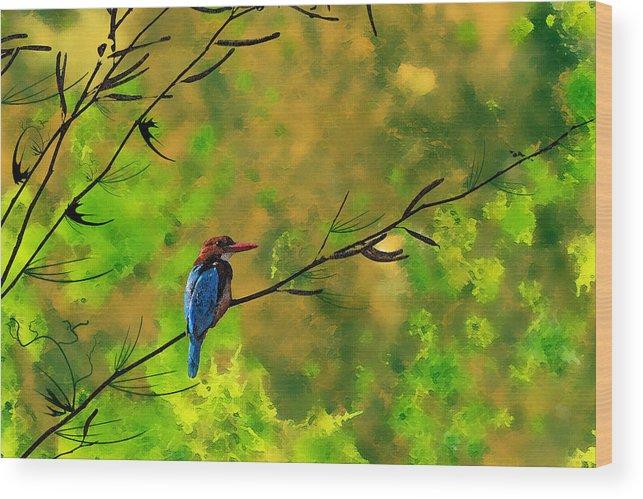 Birds Digital Art Wood Print featuring the digital art Kingfisher by Milind Waichal