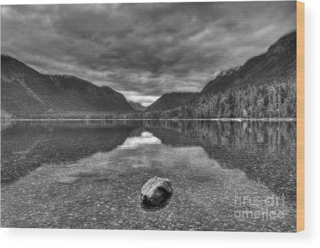 Black And White Wood Print featuring the photograph Lake Macdonald In Grey by James Anderson