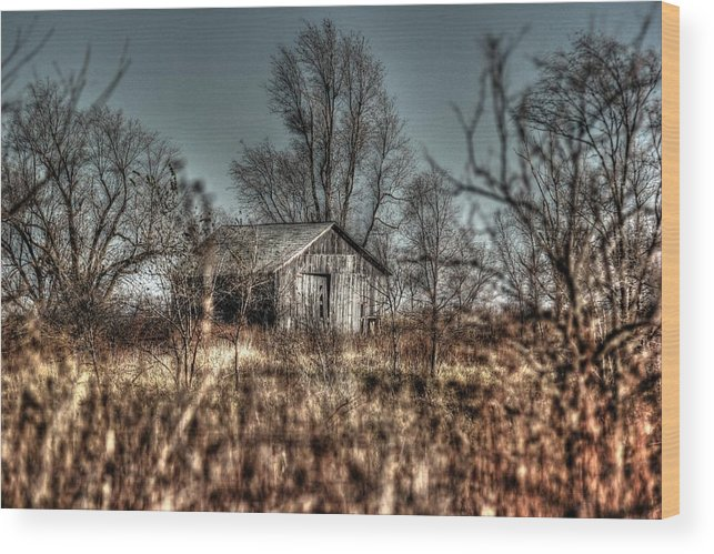 Barn Wood Print featuring the photograph Lambent by Thomas Danilovich