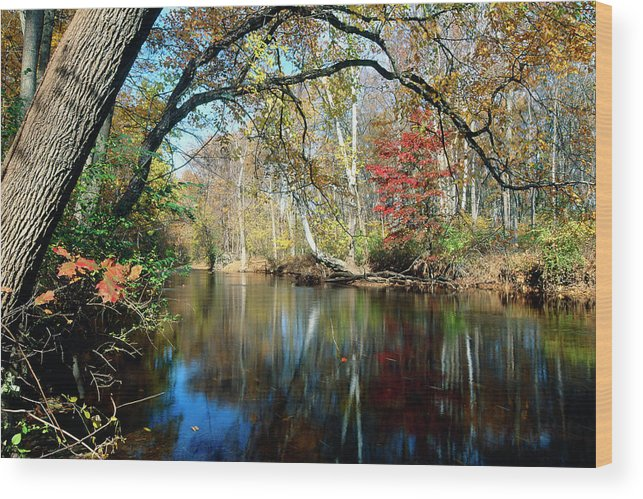 Landscape Wood Print featuring the photograph Lamington River At Tewksbury by George Oze