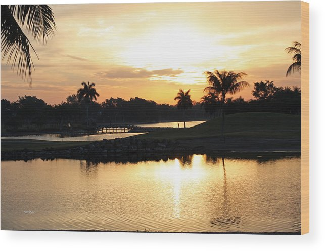 Naples Wood Print featuring the photograph Lely Sunrise Over The Flamingo by Ronald Reid