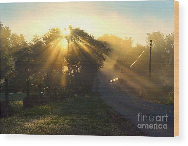 Morning Light Wood Print featuring the photograph Let His Light Shine by Kelly Heaton
