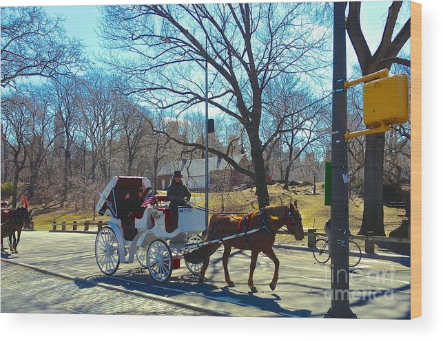 Carriage Ride Wood Print featuring the photograph Ain't Life Grand by Beth Saffer
