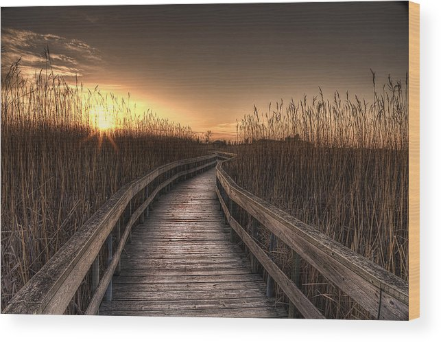 Landscape Wood Print featuring the photograph Light At The End Of The Road by Nebojsa Novakovic