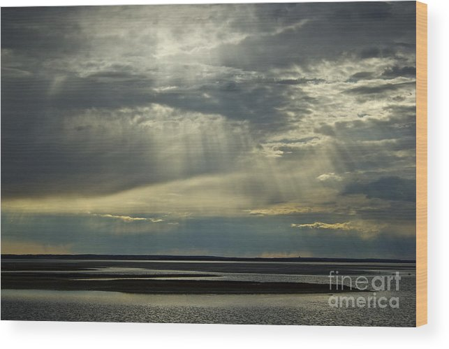 Beach Wood Print featuring the photograph Light Shine by Amazing Jules