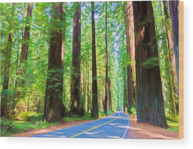 California Wood Print featuring the photograph Light Through The Redwoods by Heidi Smith