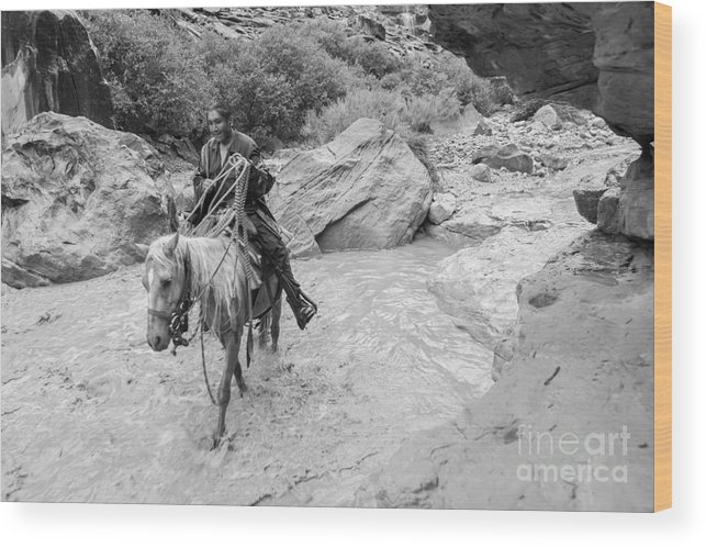 Arizona Wood Print featuring the photograph Lone Traveller by Nicholas Pappagallo Jr