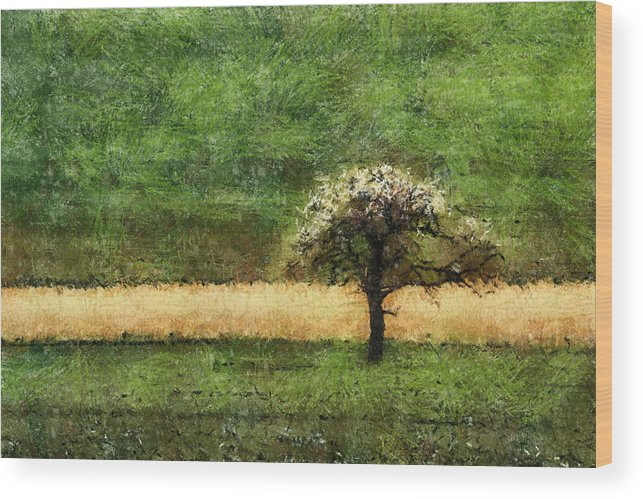 Lonely Wood Print featuring the painting Lonely by Georgi Dimitrov