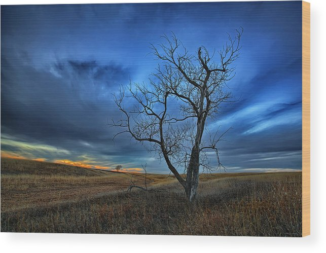 Alone Wood Print featuring the photograph Lonely Sentinel by Thomas Zimmerman