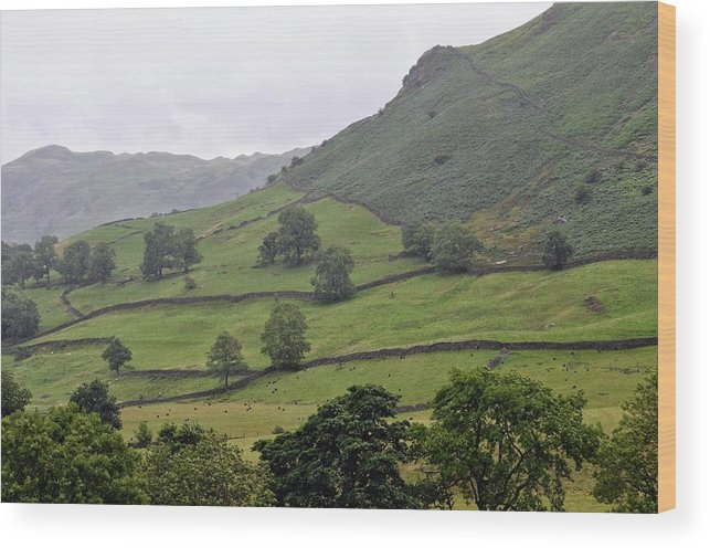 England Wood Print featuring the photograph Lovely Lake District by Michael Biggs