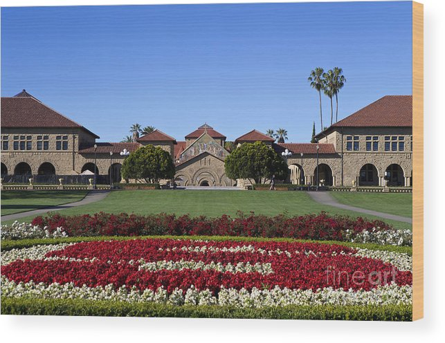Stanford University Wood Print featuring the photograph Main Quad Stanford California by Jason O Watson