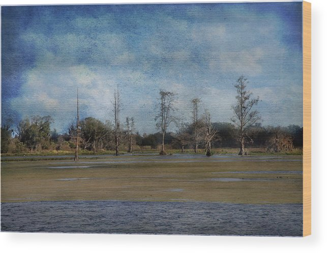 Circle B Bar Wood Print featuring the photograph Marsh Lands by Eagle Finegan