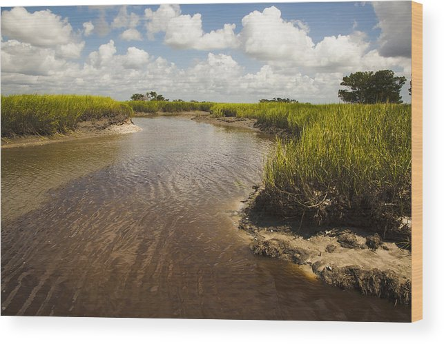 River Wood Print featuring the photograph Marsh River by Barbara Northrup