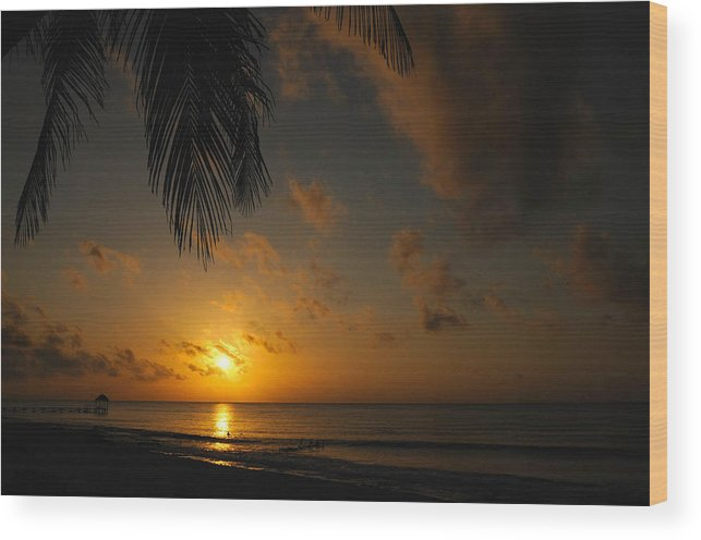 Mexico Wood Print featuring the photograph Maya Rising by Jim Southwell