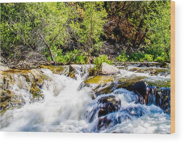 Yosemite Wood Print featuring the photograph Meditation by Brian Williamson