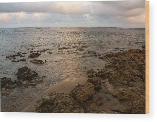 Quiet Cove Wood Print featuring the photograph Mermaid Sanctuary by Amanda Holmes Tzafrir