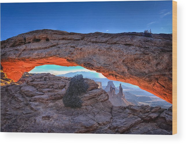 Canyonlands National Park Wood Print featuring the photograph Mesa Morning by Bill Averette
