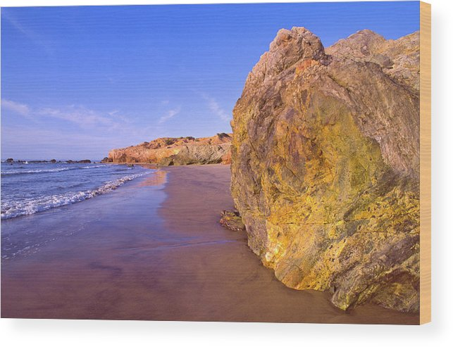 Tranquility Wood Print featuring the photograph Mexico, Gulf Of California, Baja by Dkar Images