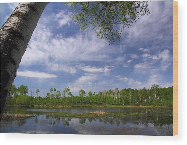 Midway Wood Print featuring the photograph Midway Reservoir by Gene Praag