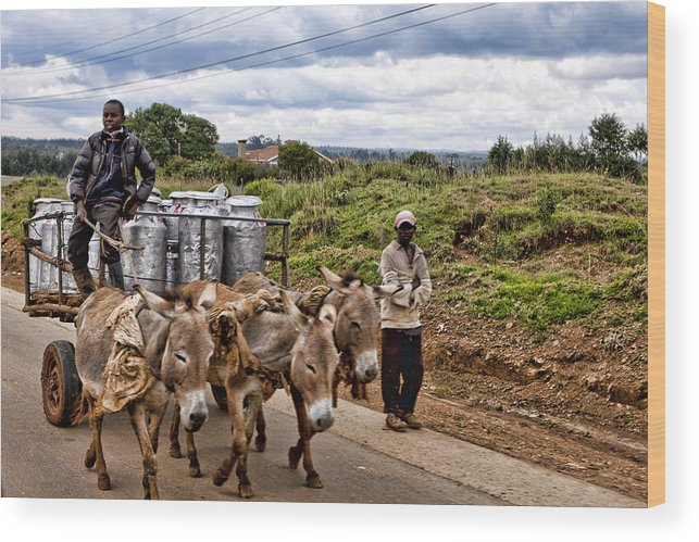 Milk Cans Hauling Market Transporting Man Crop Delivery Delivering Donkey Cart Wagon Wood Print featuring the photograph Milk Cart by Wendy White