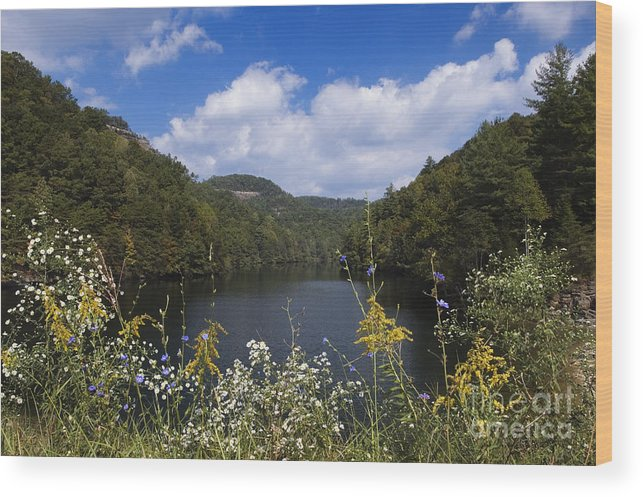 Mill Wood Print featuring the photograph Mill Creek Lake - D001303 by Daniel Dempster
