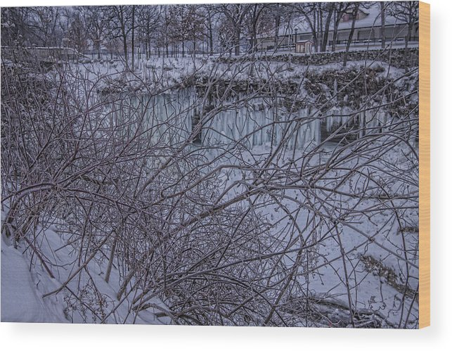Winter Wood Print featuring the photograph Minnehaha Falls In Fog by T C Hoffman
