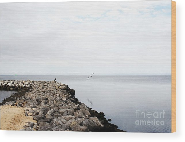 Landscape Wood Print featuring the photograph Mobile Bay 7 by Earl Johnson