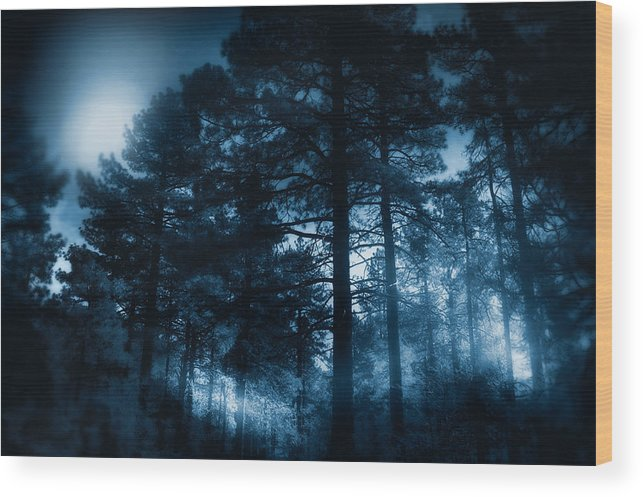 Landscape Wood Print featuring the photograph Moonlit Night by Douglas MooreZart