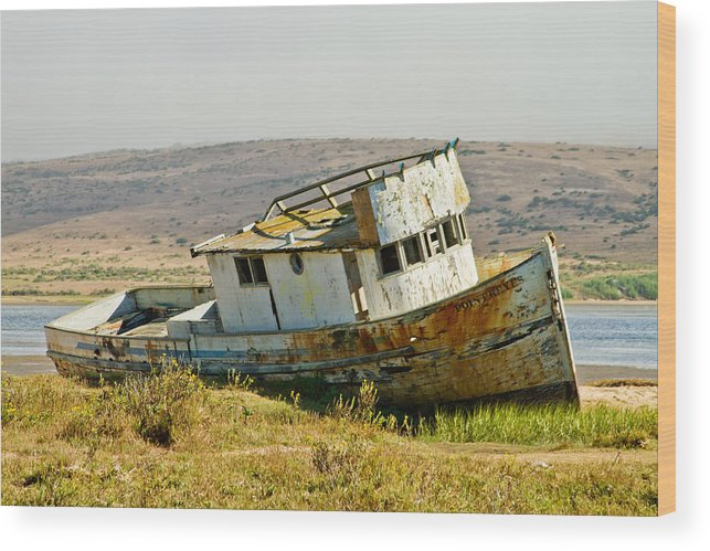 Pt Reyes Wood Print featuring the photograph Morning At The Pt Reyes by Bill Gallagher