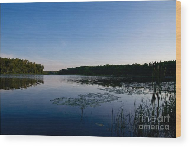 Lake Wood Print featuring the photograph Morning Lake by Jessica Davis