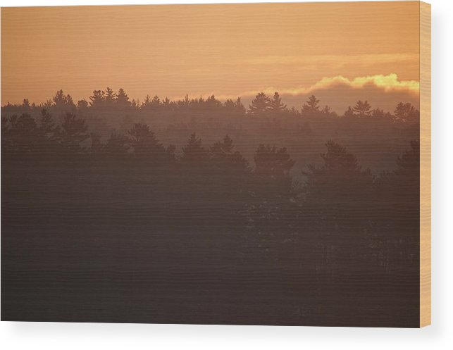Mist Wood Print featuring the photograph Morning Mist Sunrise Canaan New Hampshire by Sharon L Stacy