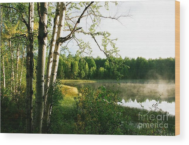 Lake Wood Print featuring the photograph Morning Solitude by Frank Townsley