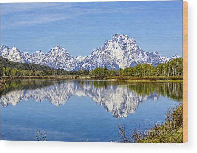 Grand Teton National Park Wood Print featuring the photograph Mount Moran by Rodney Cammauf