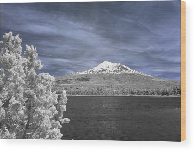 Mount Shasta Wood Print featuring the photograph Mount Shasta by Alan Kepler