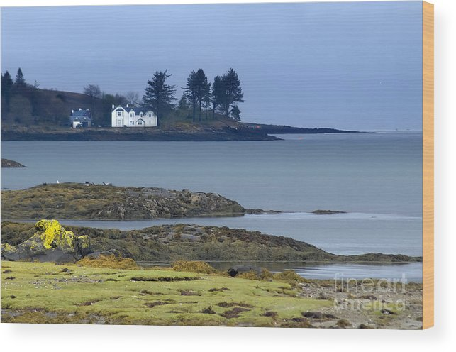 Bay Wood Print featuring the photograph Mull In The Evening by Brian Maudsley