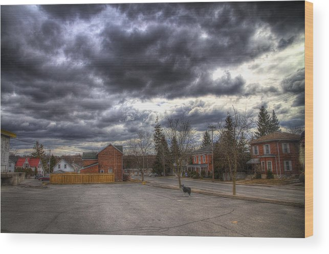 Exterior Wood Print featuring the photograph Napanee Sky Easter by John Herzog