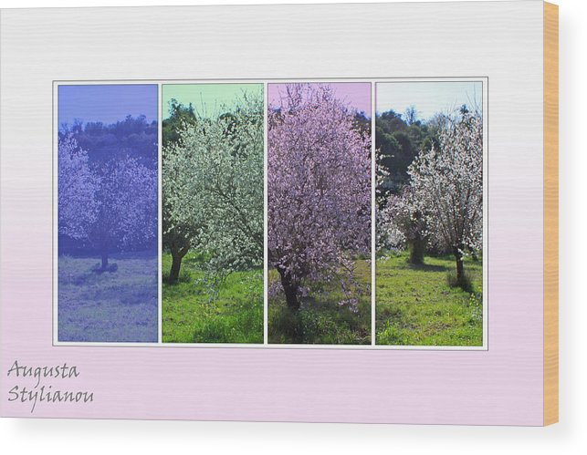 Augusta Stylianou Wood Print featuring the digital art Nature Stripes by Augusta Stylianou