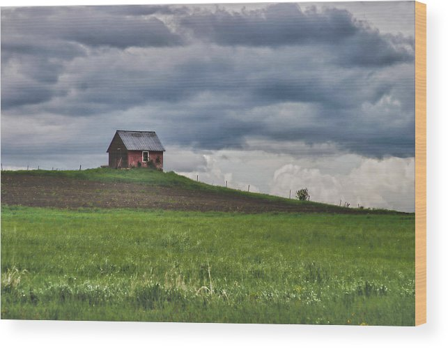 New England Shed Wood Print featuring the photograph North 40 by Jeff Folger