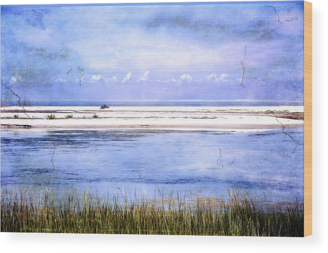 Fort De Soto Wood Print featuring the photograph North Beach by Eagle Finegan