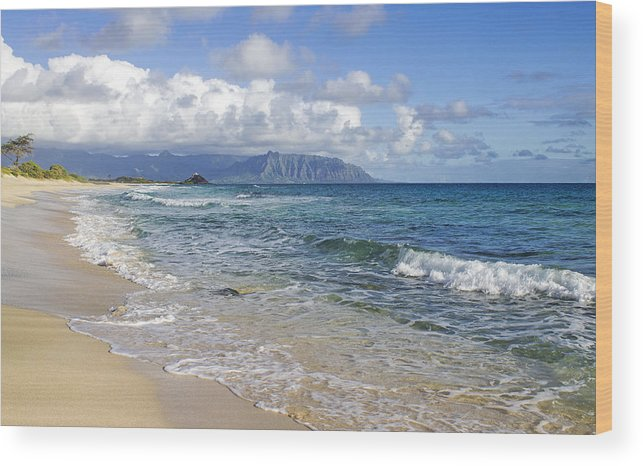 Kaneohe Wood Print featuring the photograph North Beach Kaneohe 7 Watermarked by Saya Studios