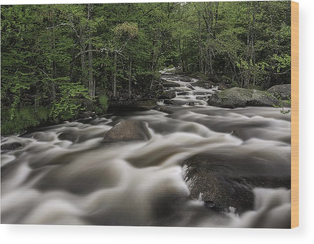 New England Wood Print featuring the photograph North Branch Greenery by Scott Snyder