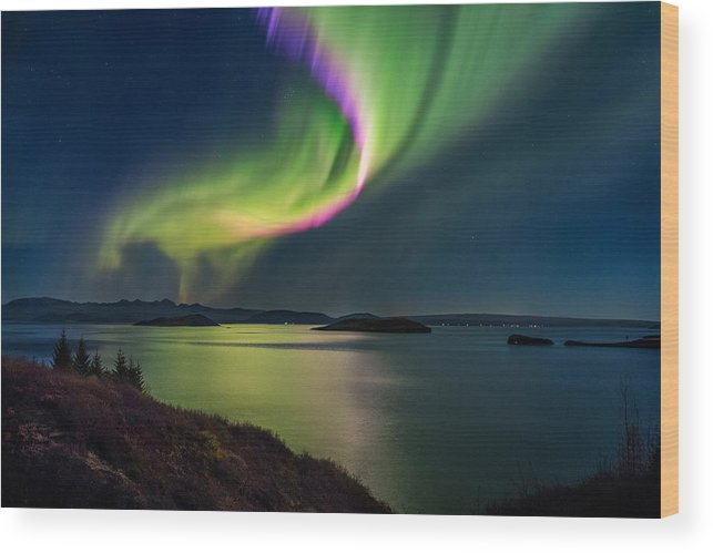 Photography Wood Print featuring the photograph Northern Lights Over Thingvallavatn Or by Panoramic Images