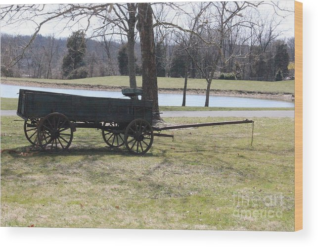 Bucks County Landscape Wood Print featuring the photograph Old Wagon by Sharon Wilkens