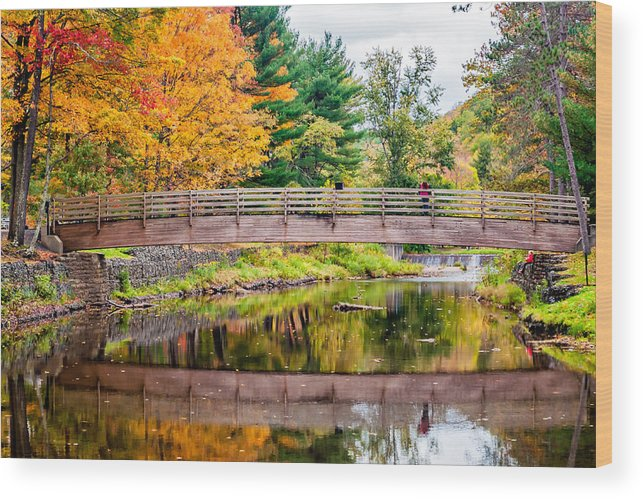 Pennsylvania Wood Print featuring the photograph Ole Bull State Park by Steve Harrington