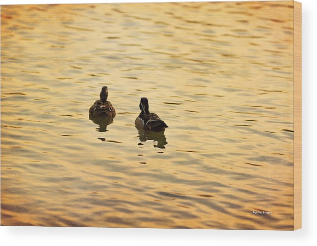 Texture Wood Print featuring the photograph On Golden Pond Ducks by Angela Stanton