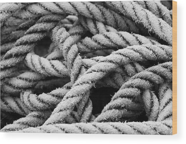 Rope Wood Print featuring the photograph On The Ropes 2 by Paul Huchton