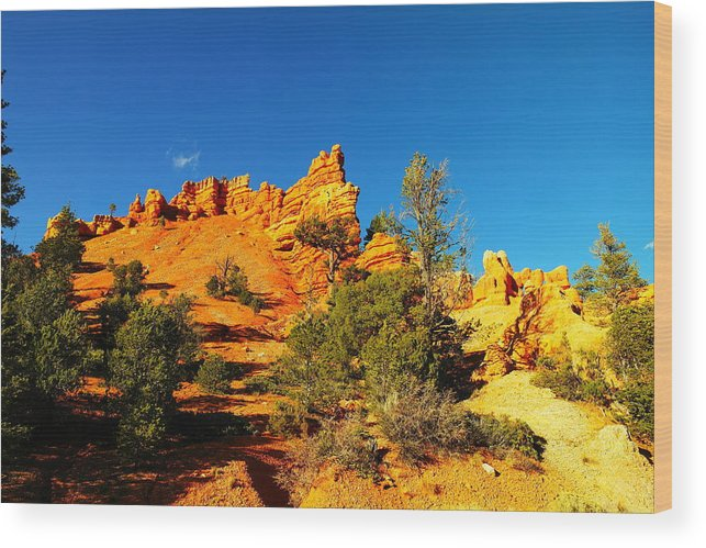 Landscape Wood Print featuring the photograph Orange Foreground A Blue Blue Sky by Jeff Swan